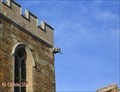 Image for Gargoyle - St Mary & All Saints Church - Holcot- Northamptonshire UK