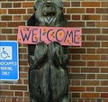 Image for Welcome Bear-Blue Ridge, Georgia