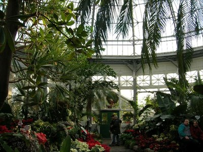 Inside Allen Gardens