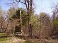 Image for Lonely Chimney at Crocker Pond