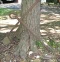 Image for Magnolia, DE Anchor