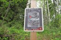 Image for The Wagon Road Connector A - Rossland, British Columbia