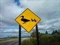 Image for Duck Crossing Houghton Lake Mi.