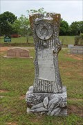 Image for J.W. Robinson - Union Chapel Cemetery - Garden Valley, TX