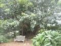Image for Virginia and Richard Crossley - Sarasota, FL