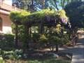 Image for Bidwell Mansion Pergola - Chico, California