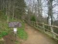 Image for Appalachian Trail @ Newfound Gap, GSMNP