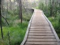Image for Von Hoevenberg Trail boardwalk - Adirondack State Park, NY