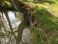 Image for L'arbre mangeur de buse - Les Magnils Reigniers, Pays de la Loire, France