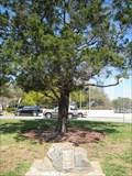 Image for Jean Sagin Montney - Jacksonville, FL