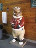 Image for Pilot Bear - South Lake Tahoe, CA