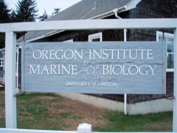 Marine Biology majors for school