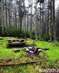 Image for Gaudineer Picnic Area & Overlook - Monongahela National Forest - Durbin, West Virginia