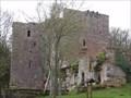 Image for Château du Wasenbourg - Niederbronn Les Bains - France