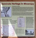 Image for Seminole Heritage in Micanopy