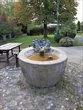 Image for Dorfbrunnen Leupolz - 88239 Wangen/Leupolz, BW, Germany