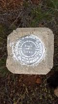 Image for MW0231 - USC&GS 'R 602' BM - Modoc County, CA