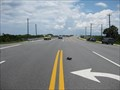 Image for Matanzas Turtle Xing -