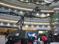 Image for Yangchuanosaurus - Atlanta International Airport