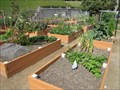 Image for West Washington Neighborhood Community Garden - San Francisco, CA