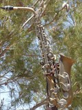 Image for Saxophone - Bottle Tree Ranch - Route 66, California, USA.