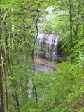 Image for Stillhouse Hollow Falls
