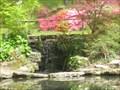 Image for Cascades Waterfall - Exbury Gardens, Exbury, South Hampshire, UK