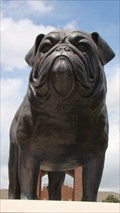 "Image for SWOSU's ""Duke"" - Weatherford, OK"