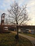 Image for Dedicated Tree - Troubsko, Czech Republic
