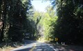 Image for CA 116 - Guerneville, CA