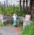 Image for Flower Hydrant - Kienberg, SO, Switzerland