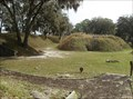 Image for Battle for Fort McAllister - Richmond Hill, GA