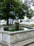 Image for Town Fountain - Zamberk, Czech Republic