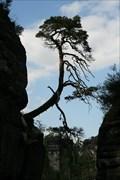 Image for Nationalpark Sächsische Schweiz - Sachsen, Germany