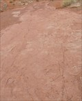 Image for Warner Valley Dinosaur Tracks