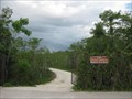 Image for Oasis ORV Trail - Big Cypress National Park