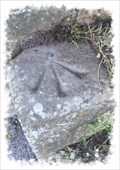 Image for Cut bench Mark and Rivet - Shakespeare Road, Dover, Kent.