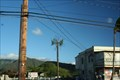 Image for Farrington Hwy Disguised Cell Tower, Oahu, HI