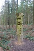 Image for Forest Spirit, Wyre Forest, Worcestershire, England
