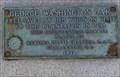 Image for George Washington Oak Hampton Plantation S.C.