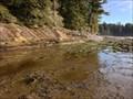 Image for Juan de Fuca Provincial Park - Vancouver Island, BC