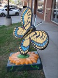 Image for Furniture Showcase Butterfly - Stillwater, OK
