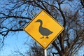 Image for Duck Crossing - Lucy Park - Wichita Falls, TX