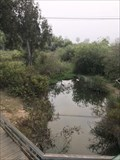Image for Cottonwood Creek - Encinitas, CA
