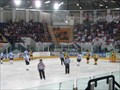 Image for Coventry Blaze - Ice Hockey Team