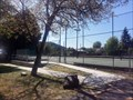 Image for Eric D. Funderburg Tennis Courts - Miner Street Park - Yreka, CA