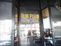 Image for Blue Point Coastal Cuisine  -  San Diego, CA