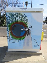 Sidewalk Fzcing Side, San Jose, California