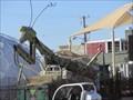 Image for Praying Mantis - Las Vegas, NV