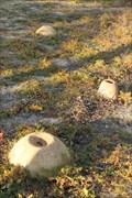 Image for Ant Land - Winthrop, WA, Australia